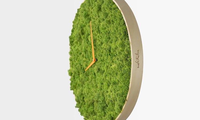 Stabilized Moss