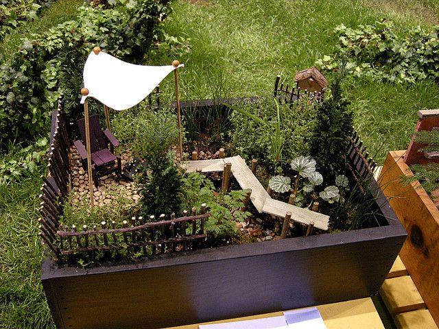 Сад в горшке своими руками фото