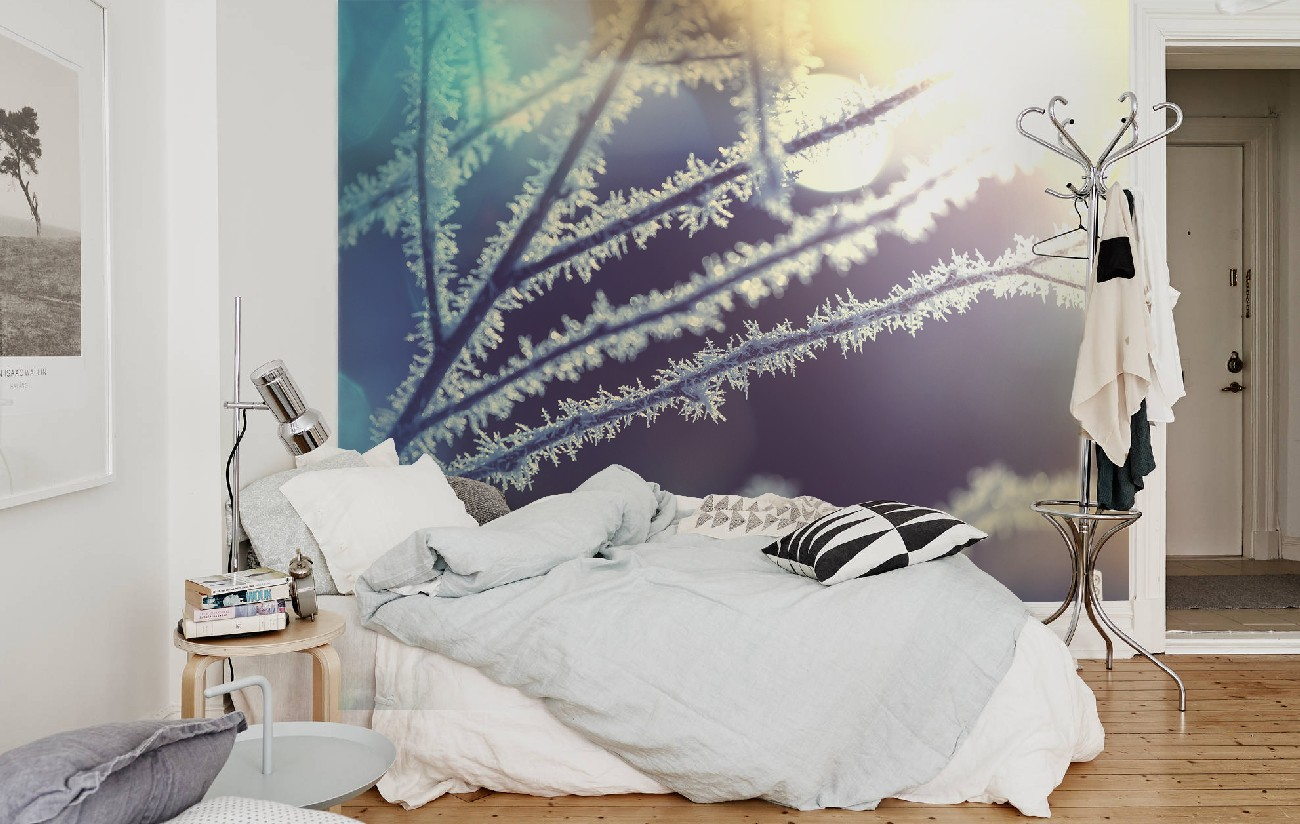 Inspirational selection of photo wallpapers with a winter motif. TOP 14