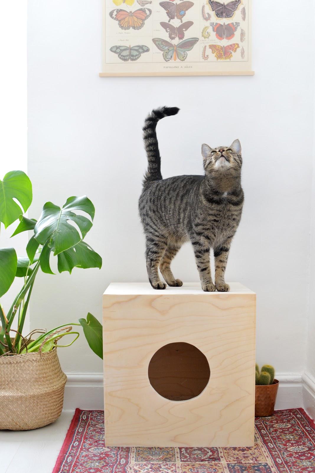 Делаем домик для кошки своими руками фото
