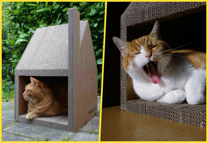 30 Домиков для кошек, которые можно сделать самостоятельно