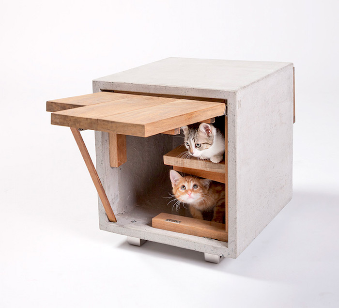 Street houses for cats