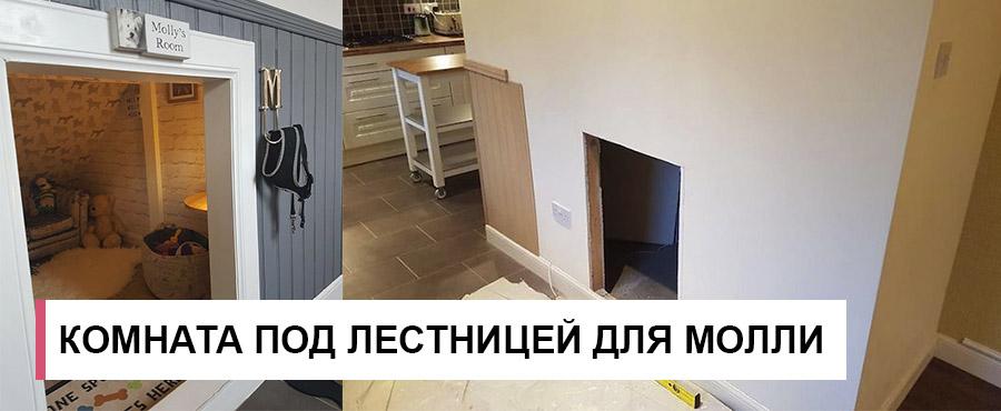 Он построил комнату под лестницей для собаки Молли, которой позавидует сам Гарри Поттер