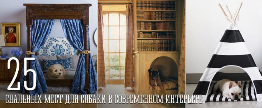 25 Спальных мест для собаки в интерьере