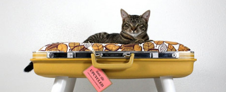 Кроватка для вашего котика {идея}