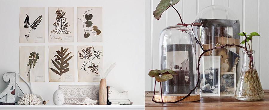 10 Творческих способов продемонстрировать коллекцию винтажных предметов