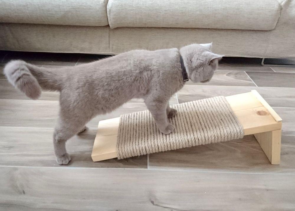 Как сделать когтеточку для кошки