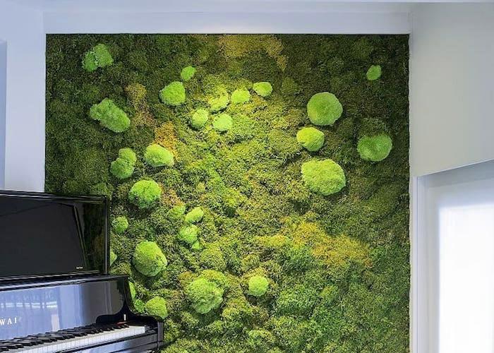 Стабилизированный мох - 30 ярких примеров внедрения в интерьер