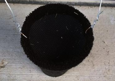 3 Безумно простых ловушек от комаров, чтобы навсегда избавиться от зуда