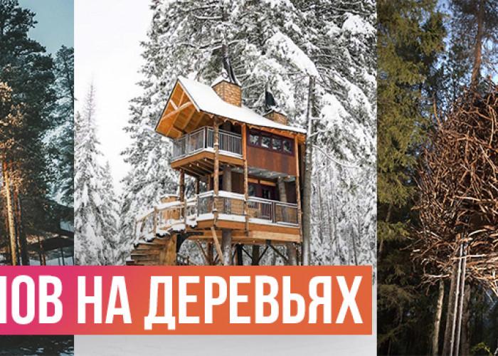 17 Сказочных домиков на дереве, которые можно арендовать