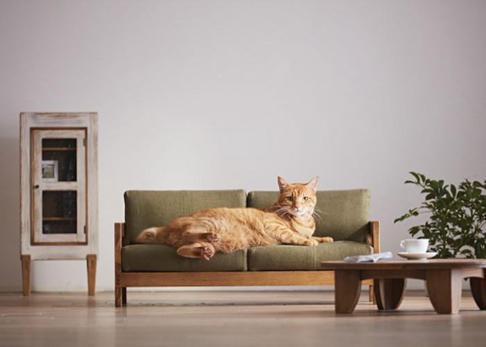 Миниатюрная мебель для кошек от японского мастера