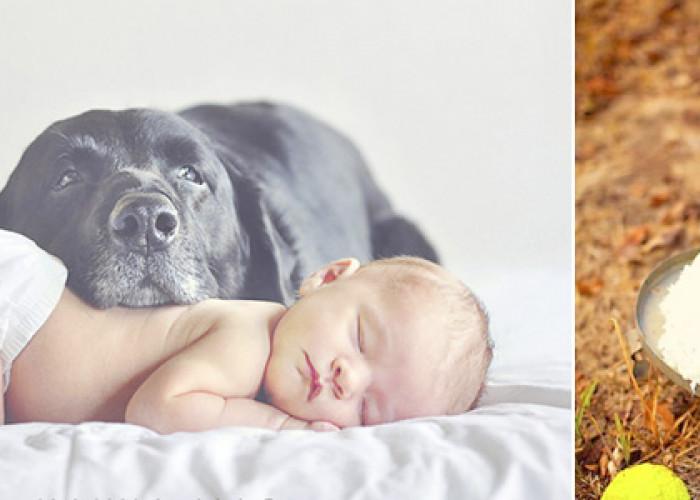 28 Идей для съемки новорожденных
